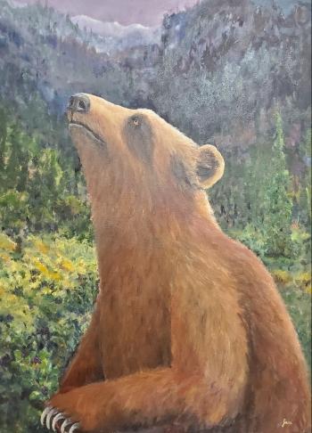 jani bear