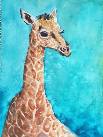 jani giraffe